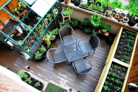 l-balcony-garden-with-potted-plants