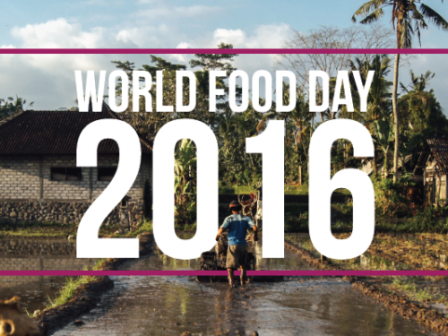 world-food-day-landing-page-banner-01-500x375